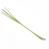 BIO Zitronengras (Cymbopogon citratus herba) (10g)